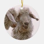 Foto tonta de las cabras ornamente de reyes