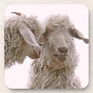 Foto tonta de las cabras posavasos