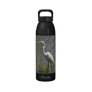 Foto tropical del pájaro del Egret blanco Botallas De Agua
