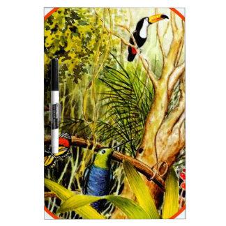 Foto tropical impresionante de la mariposa de los  pizarras blancas