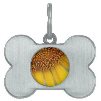 Foto única del girasol placas de nombre de mascota