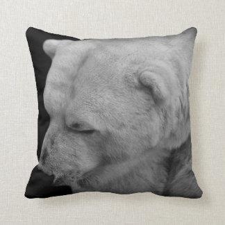Foto única del oso polar con hechos almohadas