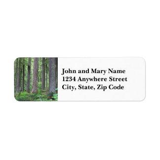 Foto verde del bosque etiquetas de remite