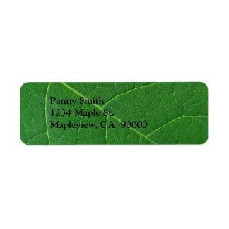 Foto verde del primer de la hoja etiquetas de remite