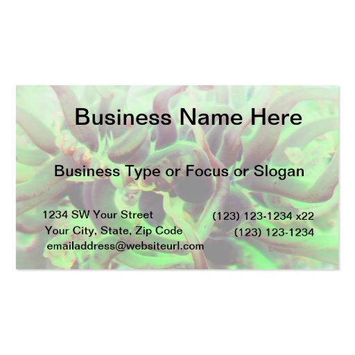 Foto verde roja del anenome del mar plantilla de tarjeta de negocio