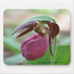 Foto vibrante Mousepad de la flor de señora desliz