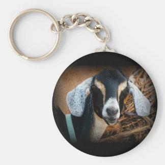 Foto vieja del retrato de Nubian de la cabra Llaveros Personalizados