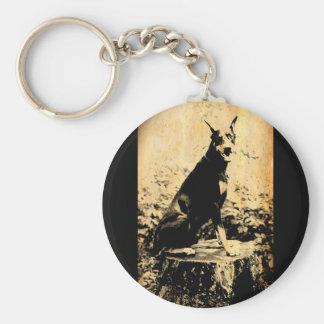 Foto vieja del vintage del Pinscher del Doberman Llavero Redondo Tipo Pin