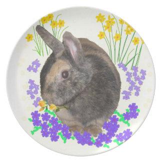 Foto y flores lindas del conejo plato de cena