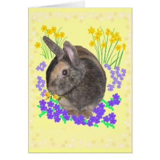 Foto y flores lindas del conejo tarjeta de felicitación