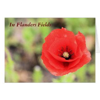Foto y poema de la amapola de campos de Flandes Tarjeta De Felicitación