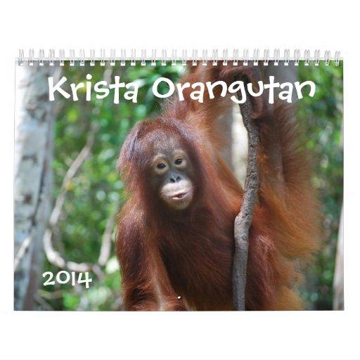 Fotografía 2014 de la fauna del orangután de calendario de pared