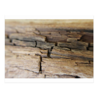 Fotografía abstracta de la madera postales