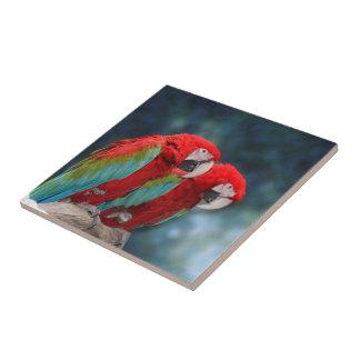 Fotografía adorable del animal de los pares de los teja  ceramica