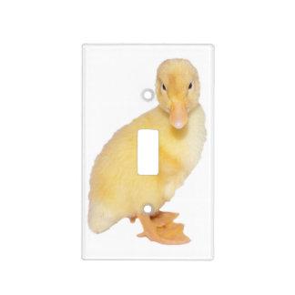 Fotografía amarilla adorable del anadón placa para interruptor