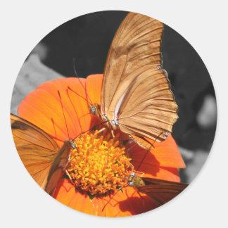 Fotografía anaranjada de las mariposas de la flor pegatina redonda