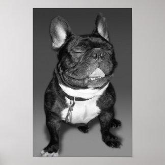 Fotografía artística de una sonrisa del dogo franc poster