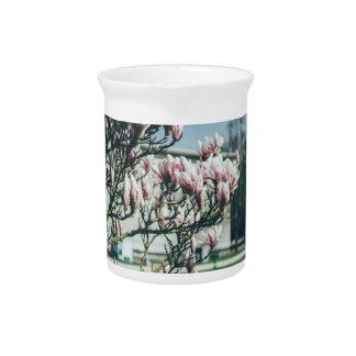Fotografía azul, árbol de la magnolia en primavera jarrón