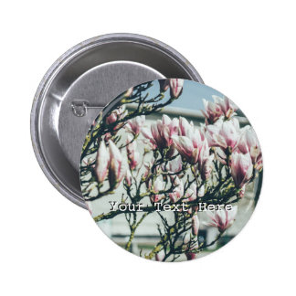 Fotografía azul, árbol de la magnolia en primavera pin redondo 5 cm
