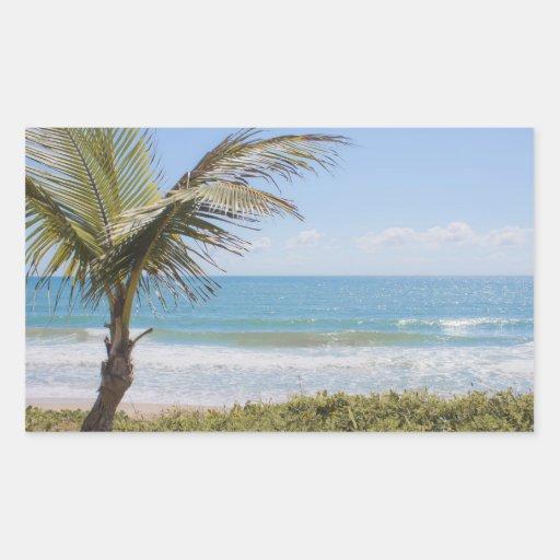 Fotografía azul de la palma del mar y de coco pegatina rectangular