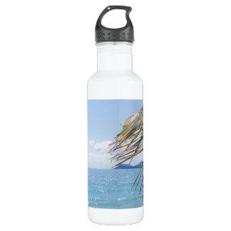 Fotografía azul de la palma del mar y de coco