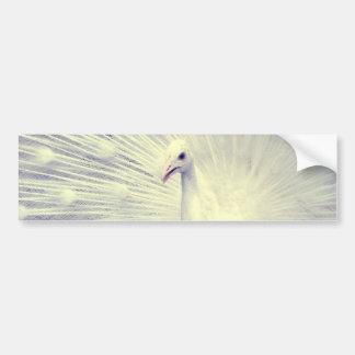 Fotografía blanca de la bella arte del pavo real pegatina para auto