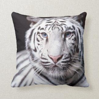 Fotografía blanca del tigre de Bengala Cojín