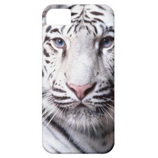 Fotografía blanca del tigre de Bengala iPhone 5 Carcasas