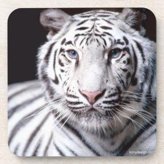 Fotografía blanca del tigre de Bengala Posavasos De Bebida