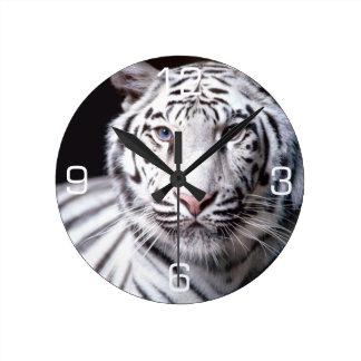 Fotografía blanca del tigre de Bengala Relojes De Pared