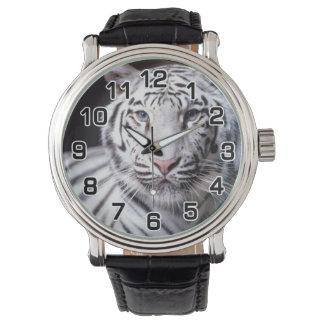 Fotografía blanca del tigre de Bengala Relojes De Mano