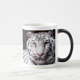 Fotografía blanca del tigre de Bengala Taza Mágica