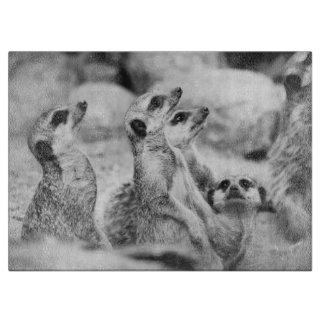 Fotografía blanco y negro de Meerkat Tabla Para Cortar