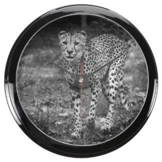 Fotografía blanco y negro del guepardo, animal relojes aqua clock