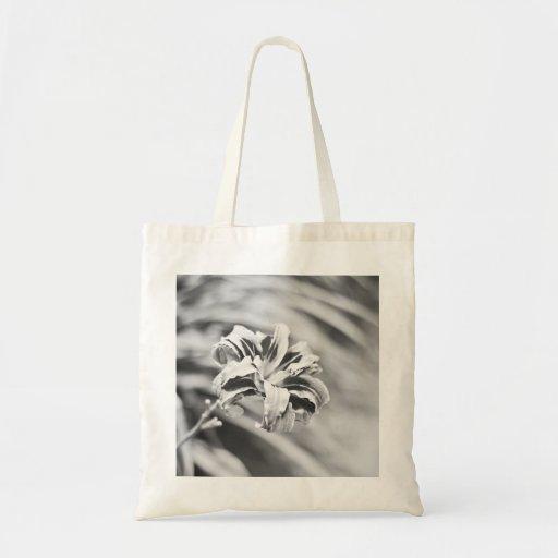 Fotografía blanco y negro elegante de la flor bolsa