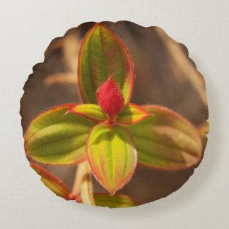 fotografía botánica de la almohada del trow de la cojín redondo