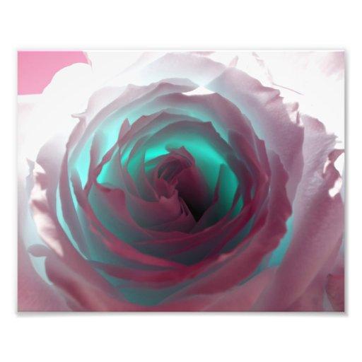 Fotografía color de rosa de neón impresion fotografica