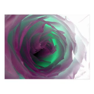 Fotografía color de rosa de neón tarjeta postal