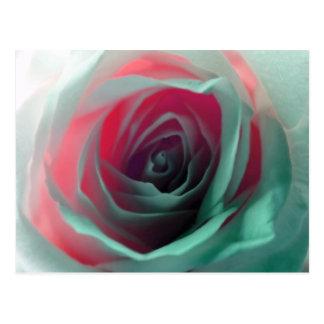 Fotografía color de rosa de neón postales