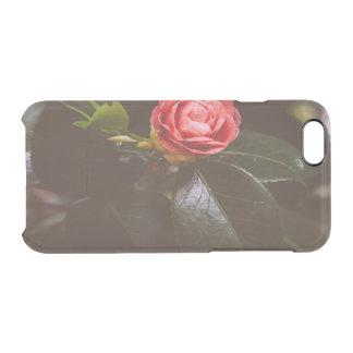 Fotografía color de rosa rosada retra, romántico, funda clearly™ deflector para iPhone 6 de uncommon