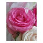 Fotografía color de rosa y de Lilly Membrete