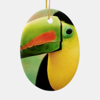 Fotografía colorida de la naturaleza salvaje del adorno navideño ovalado de cerámica