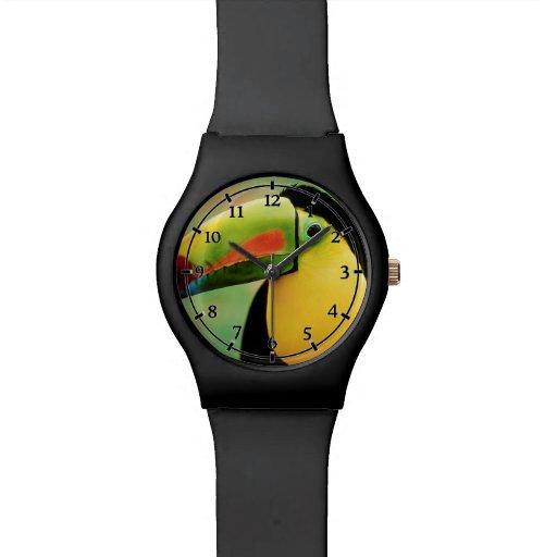 Fotografía colorida de la naturaleza salvaje del p relojes