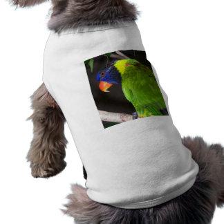 Fotografía colorida del loro de Lorikeet del arco  Playera Sin Mangas Para Perro