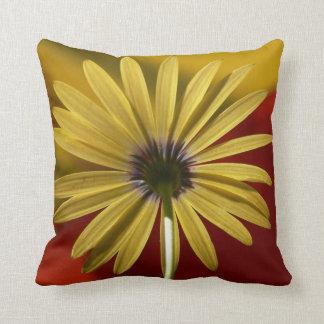 Fotografía colorida grande de la almohada de la cojín decorativo