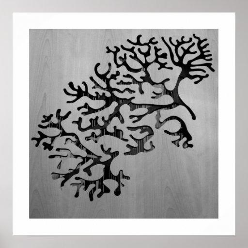 fotografía coralina de madera posters