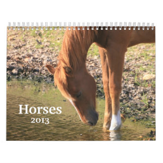 Fotografía de caballos calendarios