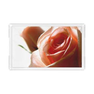 Fotografía de delicadas rosas acrylic tray