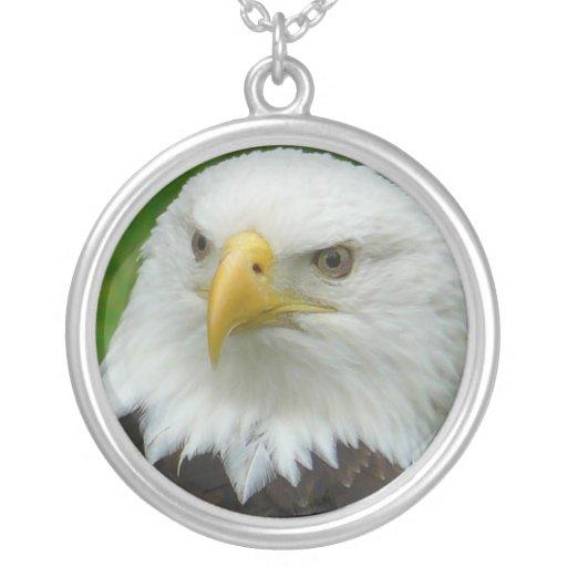 Fotografía de Eagle - Eagle calvo norteamericano Joyeria Personalizada