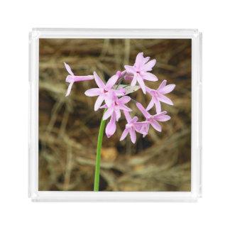 Fotografía de Flores campanitas Acrylic Tray